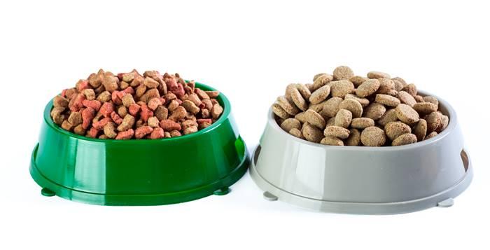 posudice sa hranom prehrana pasa i mačaka